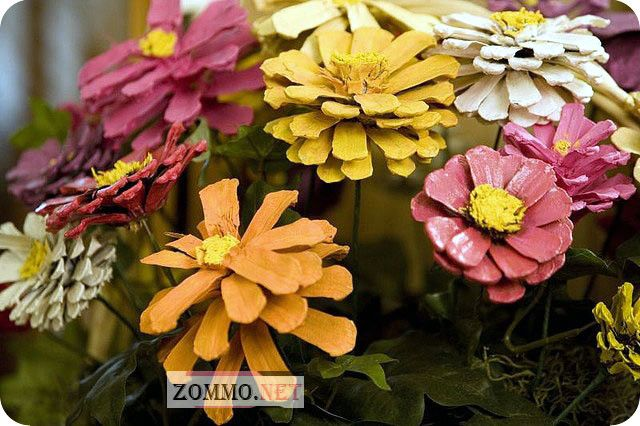 Разноцветные шишки