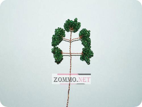 Ветки для денежного дерева