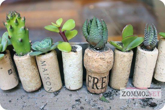Садим растения