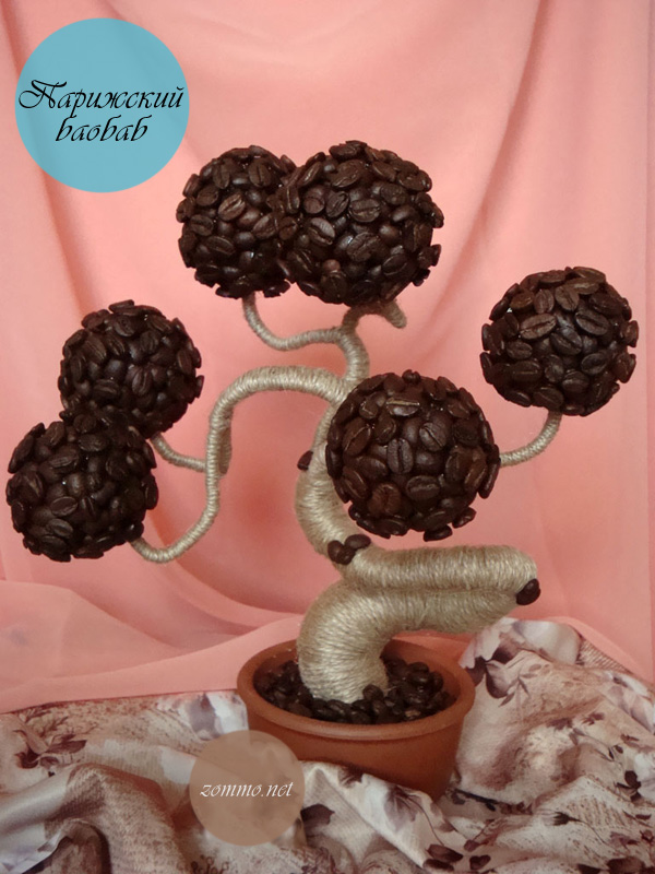 """Кофейное дерево """"Парижский баобаб"""""""