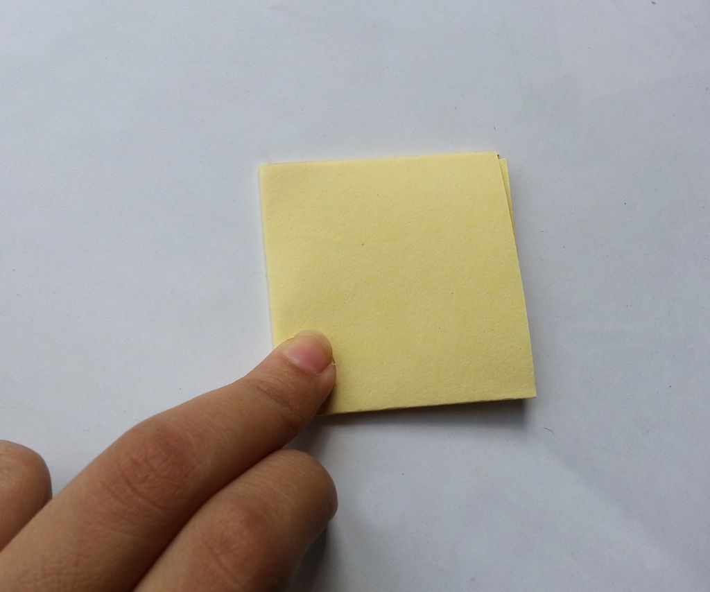 Камелии из бумаги-складываем квадрат