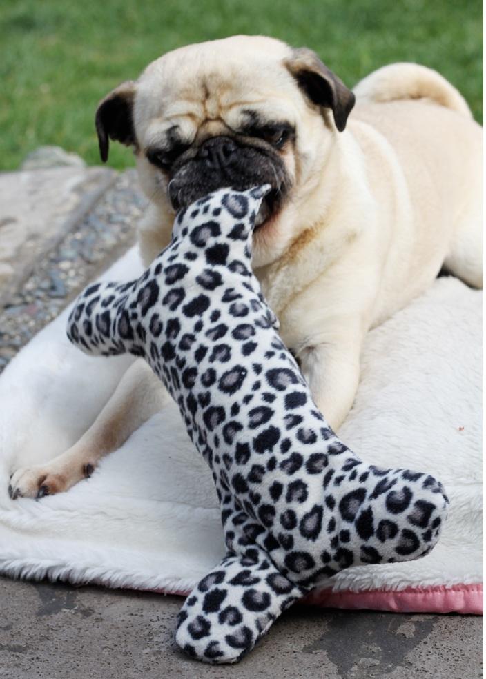 Игрушка для собак своими руками