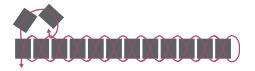 Браслет из бисера для начинающих-схема начала второго ряда