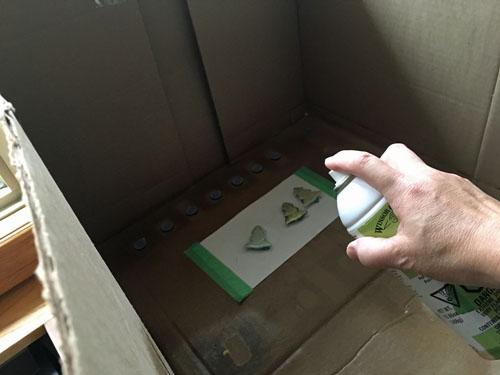 Елочка из полимерной глины-покройте поделки лаком