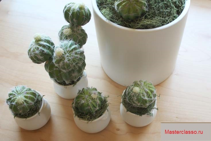 Декор цветочных горшков - прикрепите к пенопласту мох и кактусы