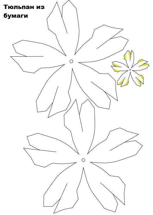 Тюльпаны из бумаги своими руками - шаблон