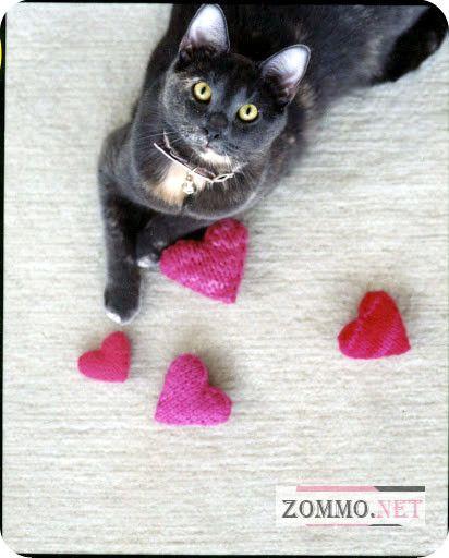 Вязаные игрушки для кота