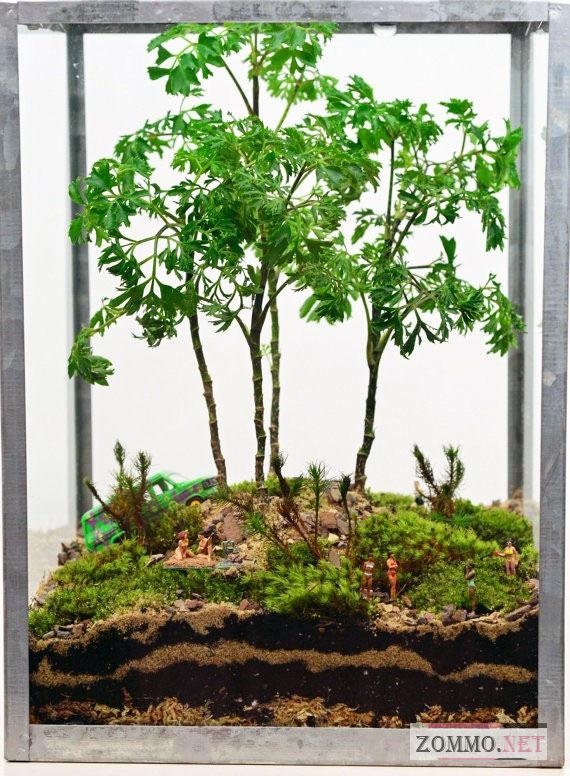 Зеленый террариум для растений