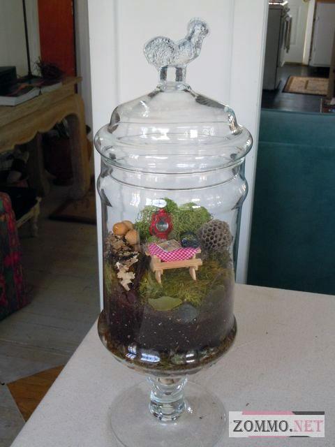 Дачный террариум для растений