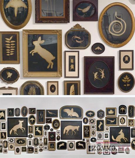 Коллекция картин с животными