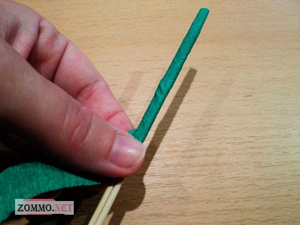 Зеленая шпажка