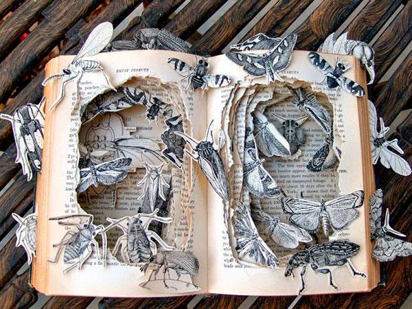 Бабочки в книге
