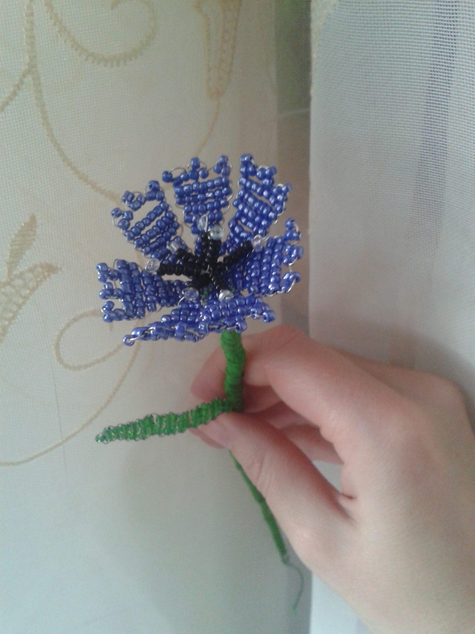 Василек из бисера: схема плетения с фото
