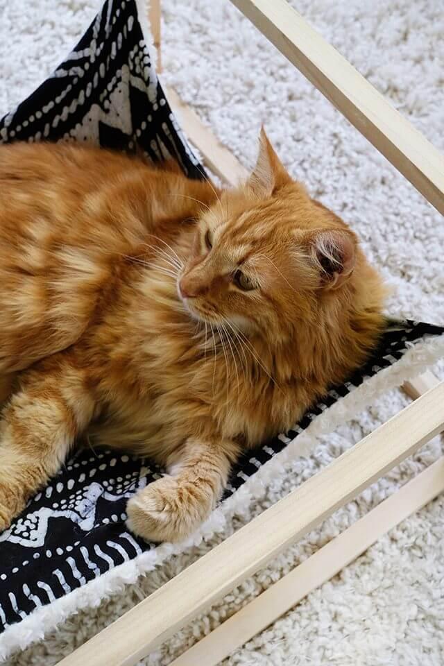Гамак для кота - готовое изделие