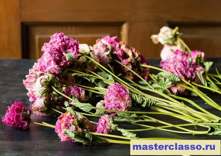 Венок из цветов - высушенные пионы