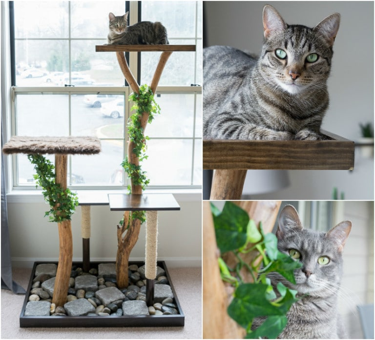 Как сделать когтеточку для кошки - готовое изделие